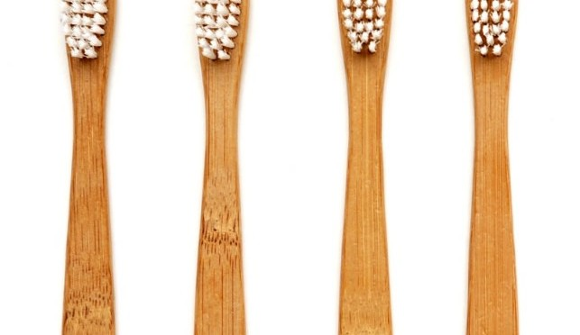 The Truth About Your Biodegradable Bamboo Toothbrush – My Plastic-free Life